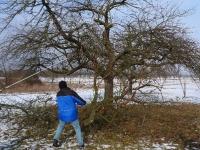 Mensch und Baum 5