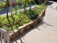 Garten 4-1
